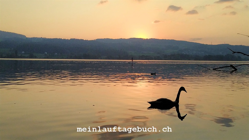 Niederuster, Greifensee