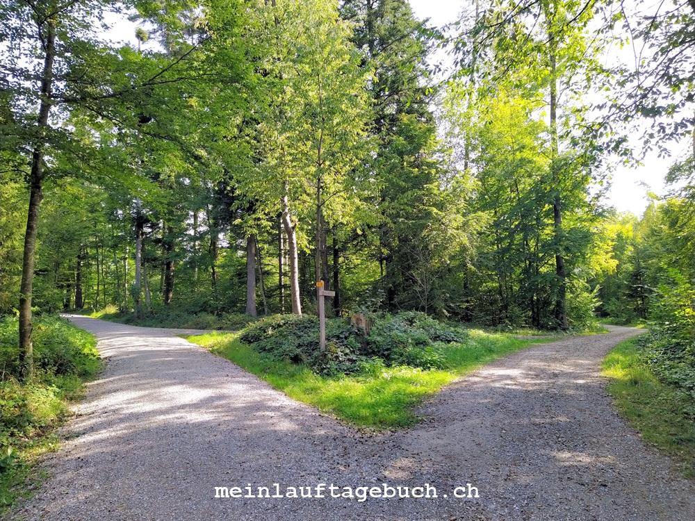 Zürich Witikon, Wald