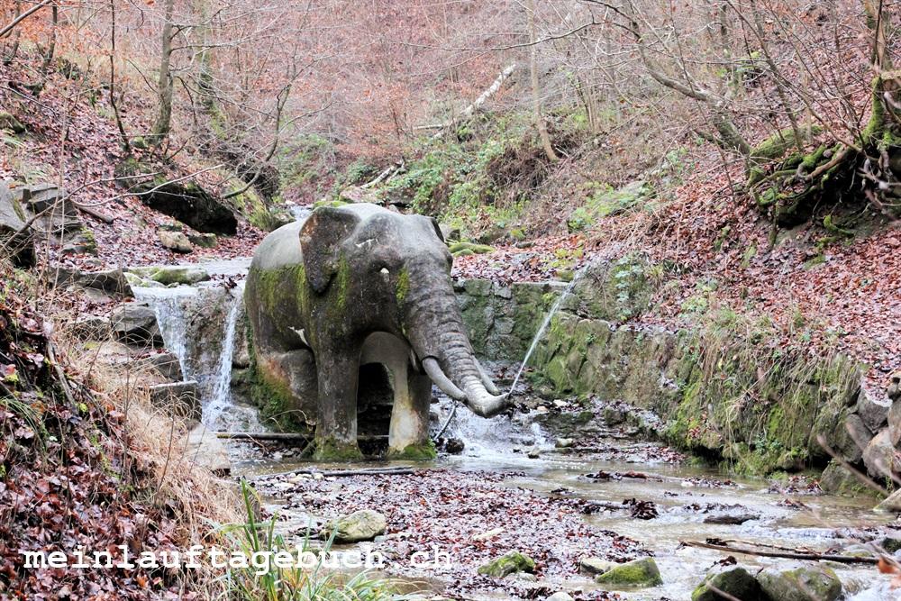 Elefantenbach Zürich Wanderung