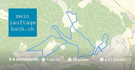 Laufen Training Pfaffhausen Wald