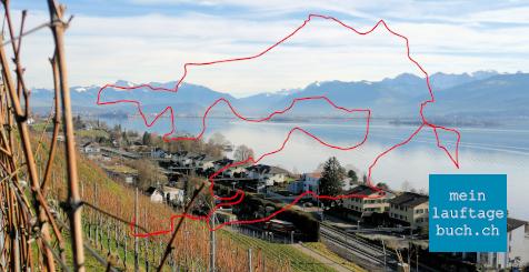 Laufen Training Stäfa Zürichsee Goldküste