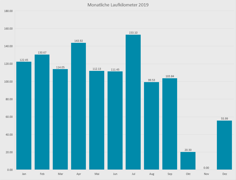 Laufjahr 2019 LaufstreckenLaufjahr 2019 Monatskilometer