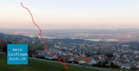 Laufen Training Stäfa Pfaffhausen Greifensee Wald
