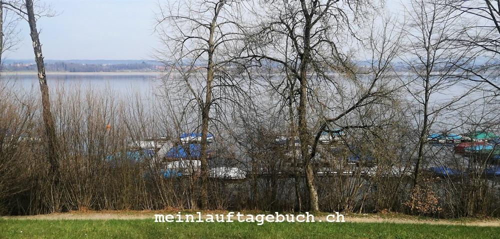 Laufen Training Pfaffhausen Wald Fällanden Greifensee