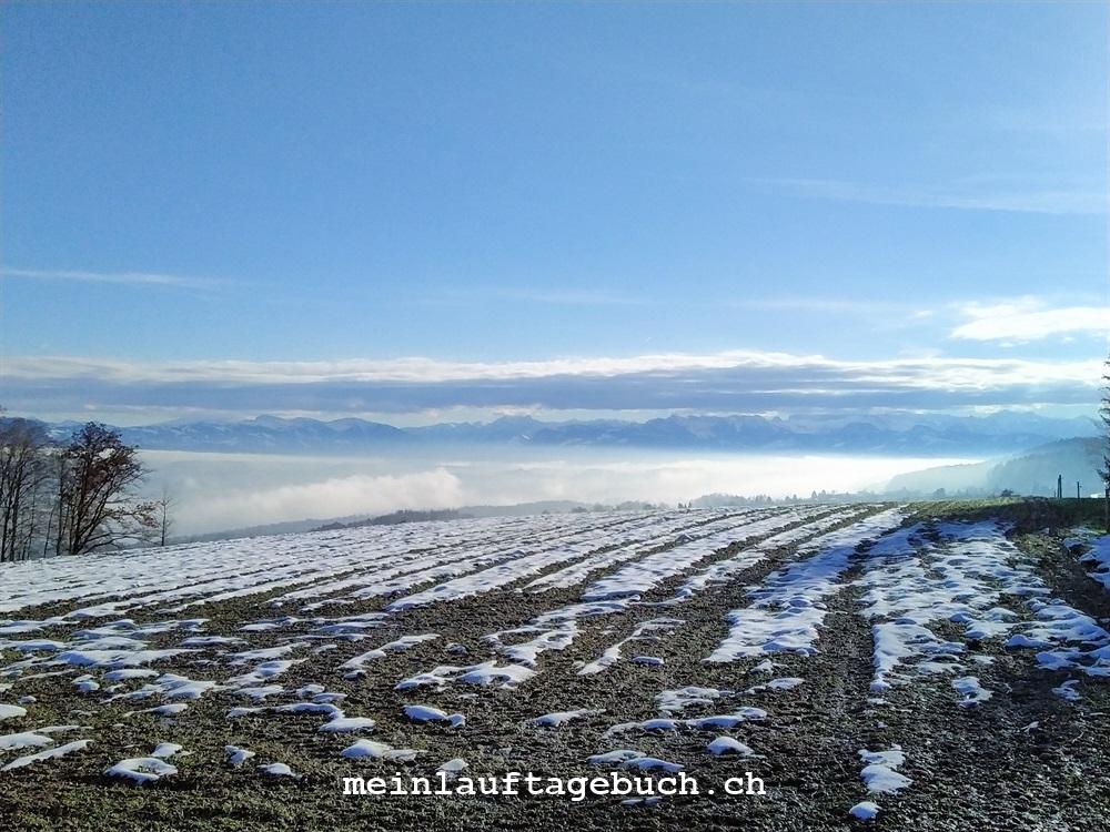 Laufen Training Pfaffhausen Herbst Nebel