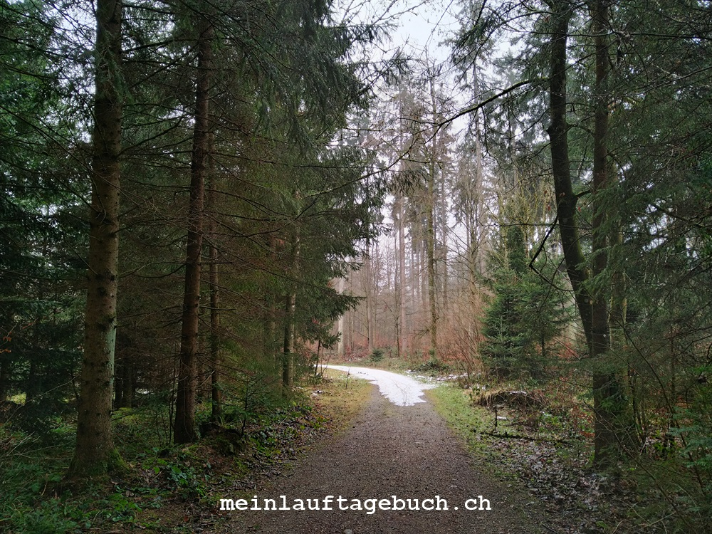 Laufen Wald Pfaffhausen Neujahr Winter Laufsocken