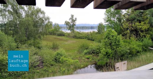 Greifensee Fällanden Aussichtsturm